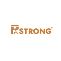 Pastrong Electronics Co. , Ltd Logo