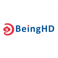 Shenzhen BeingHD Electronics CO., LTD Logo