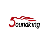 Soundking Group Logo