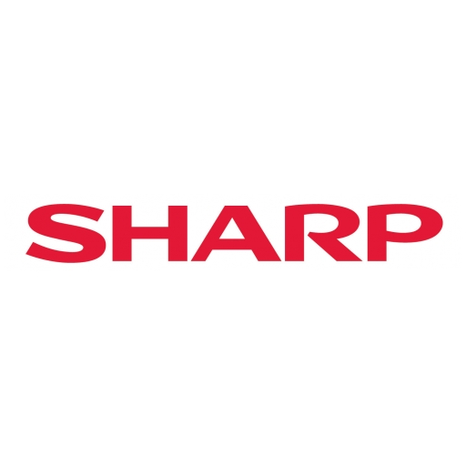 Michael Bailly, Director of Product Planning and Marketing, Visual Solutions, (Sharp Europe)